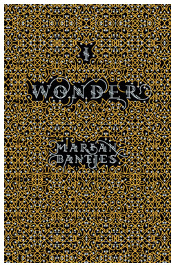 I Wonder cover by Marian Bantjes